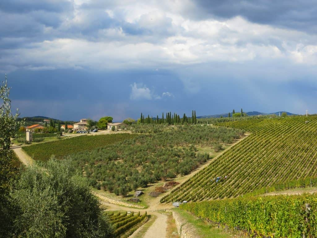 View of the Chianti hill, the beautifull area situated between the provinces of Siena and Florence